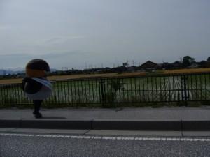 2-琵琶湖の日