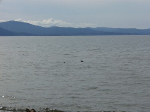 1-琵琶湖畔