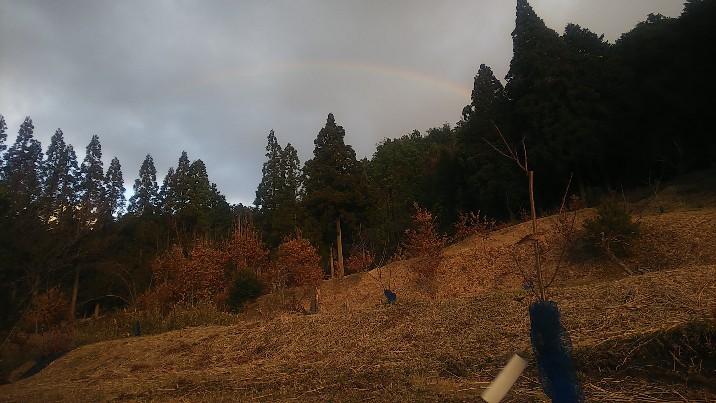 幸運の虹2020-01-01